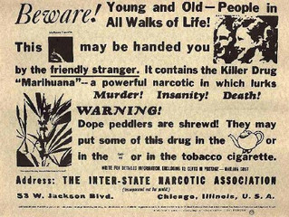 A History of Cannabis