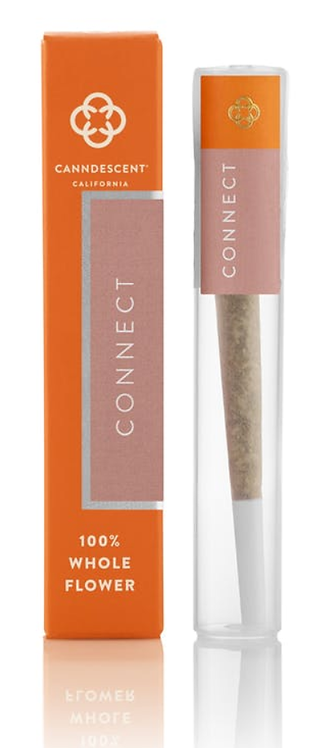 Connect - Canndescent Pre-Roll (1 Gram)
