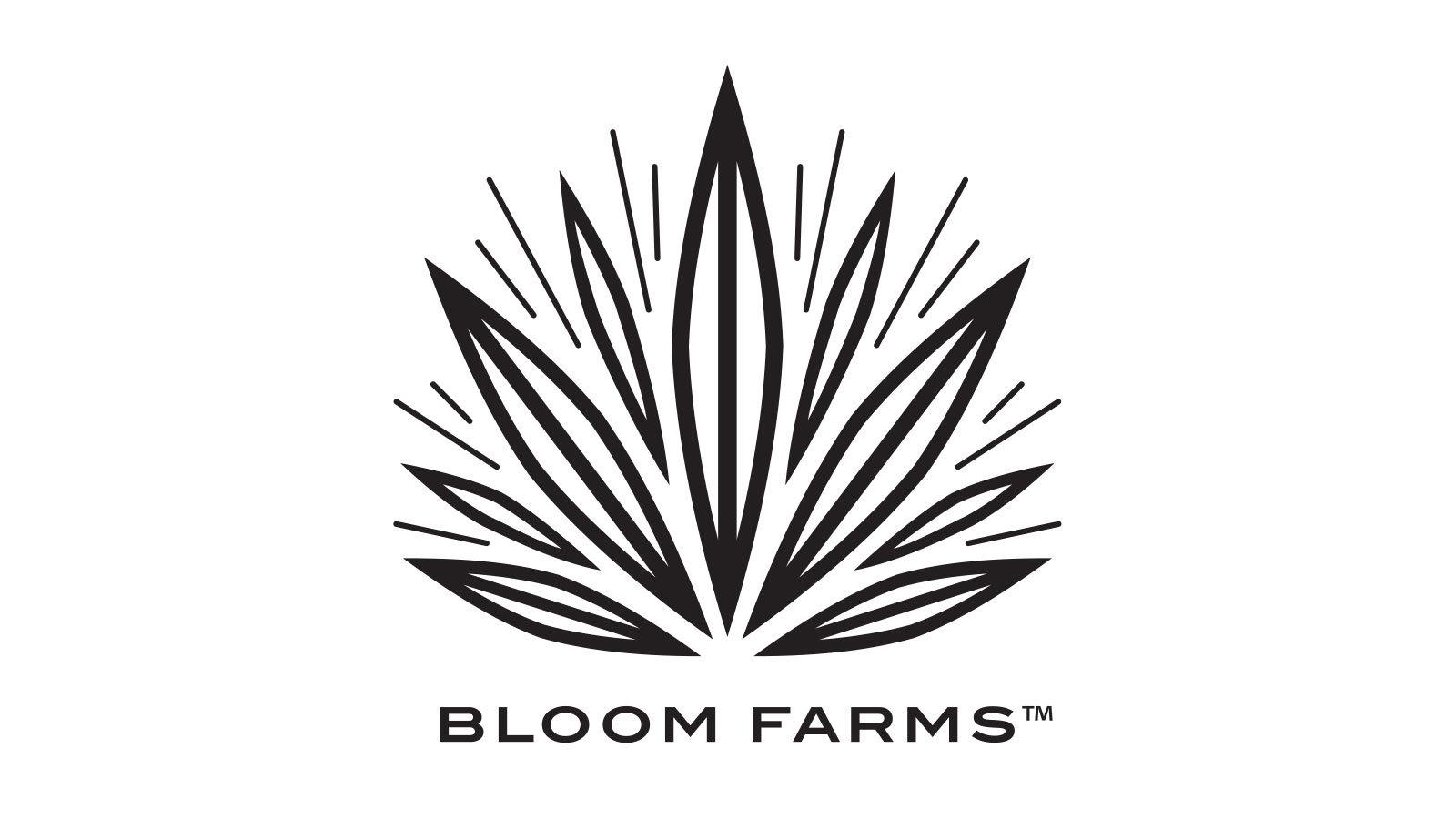 Bloom Farms - PAX Era Pod - High CBD (1/2 Gram)