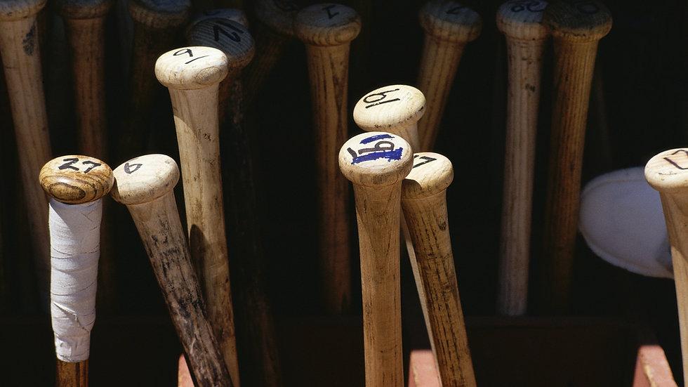Session 2-Baseball Crosstraining - NO MEALS/ NO LODGING