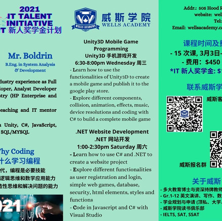 Unity3D Mobile Game Programming & .Net Website Development