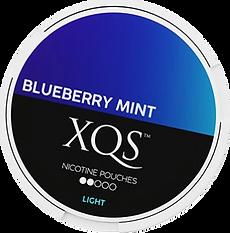 XQSBlueberrylight_370x.png