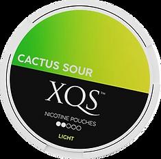 XQScactussourLight_370x.png