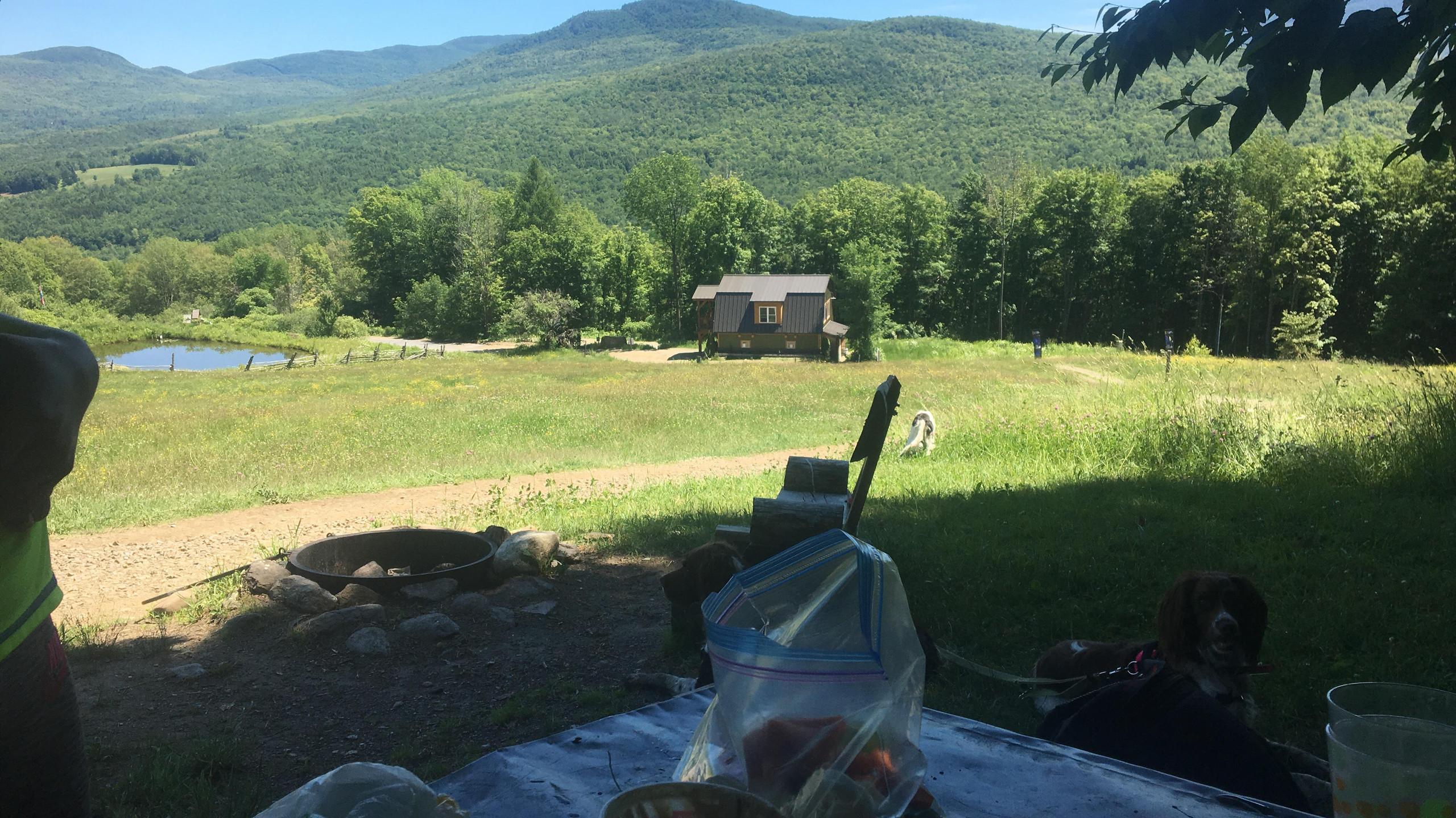 L'heure du picnic