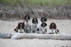 Vacances en famille au Maine