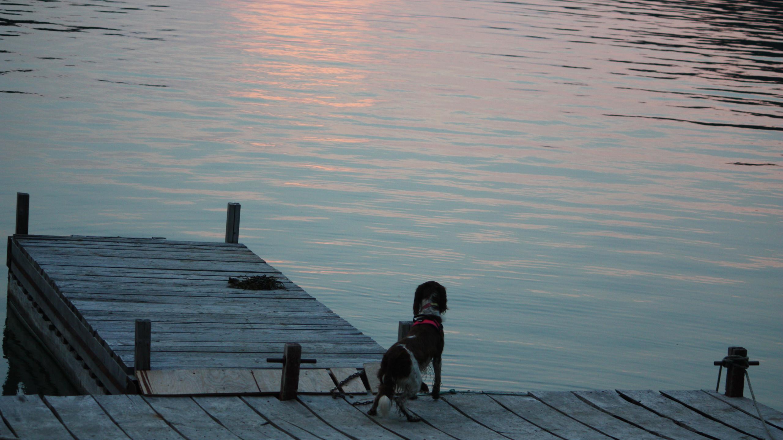 Sur le quai, on surveille.