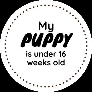 under 16 weeks old.png