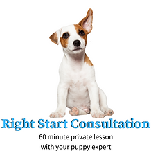 Right Start Consultation.png