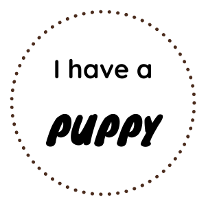 New Puppy (1).png