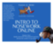 Copy of FREE ONLINE CLASS (2).png