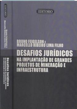 Desafios Jurídicos na Implantação de Grandes Projetos de Infraestrutura