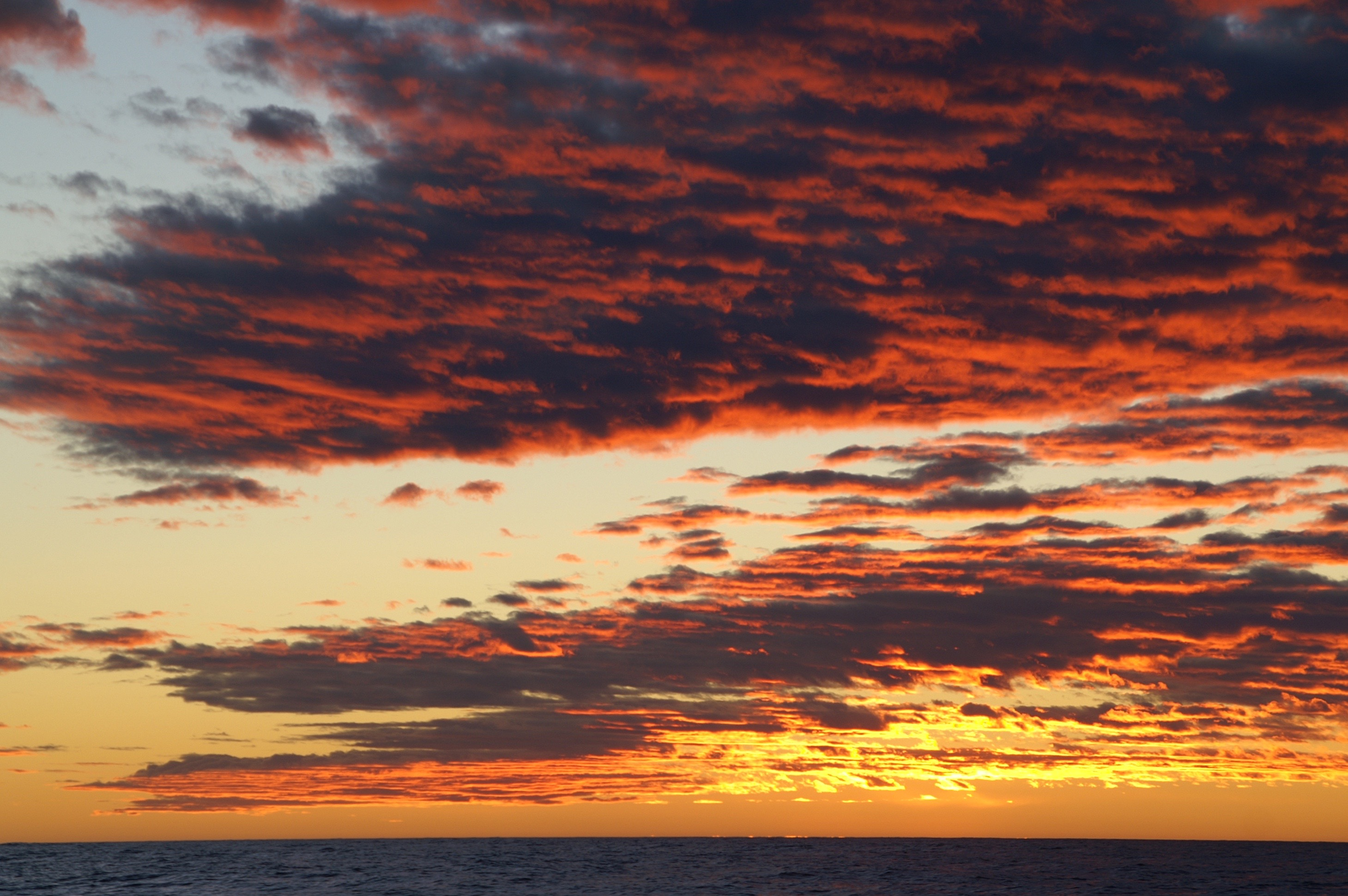 Bahia Blanca - Stateneiland