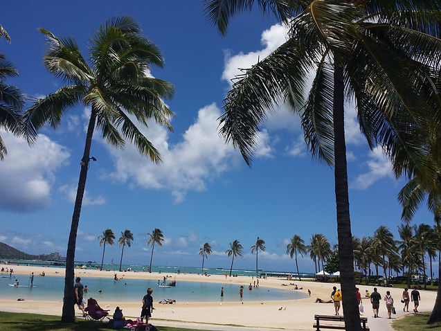 The Lagoon by THe Hilton Hawaiian Villages Hotel