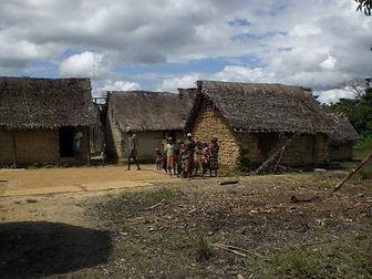 Madagascar Un Monde De Symbiose