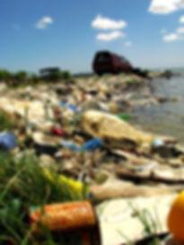 Pollution Un Monde De Symbiose