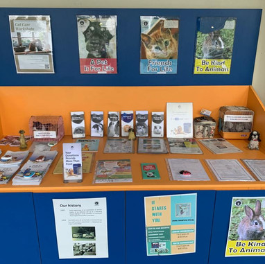 Community Animal Clinic SPCA July 2019
