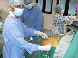 Gallbladder being removed in a bag