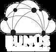 Bunus_Logo_W.png