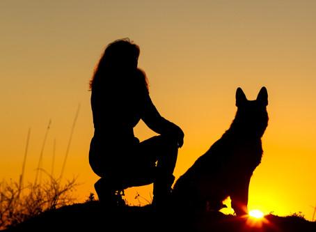 DOG BITE PREVENTION (Part Two)