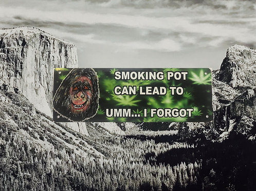 Smoking Pot Can Lead To Umm...I Forgot Metal Sign