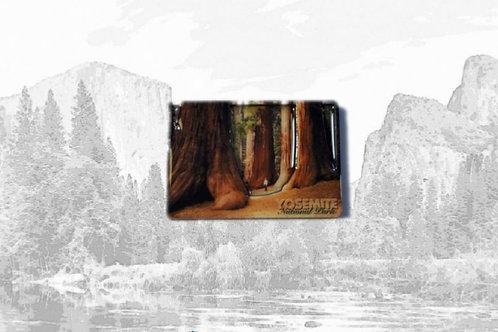 3D Yosemite Magnet
