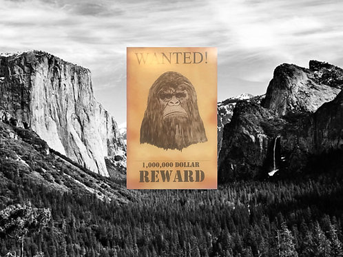 Wanted Reward Cardboard BigFoot Sign