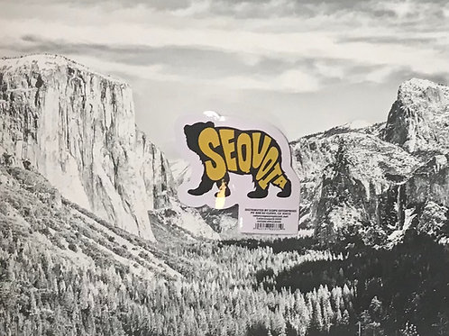 Sequoia Black Bear Small Sticker