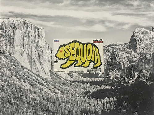 Sequoia Yellow Bear Mini Sticker
