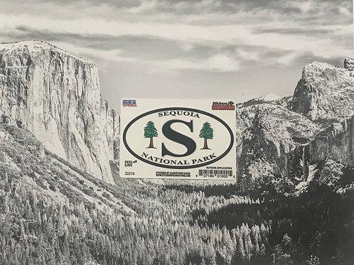 Sequoia Tree's Mini Sticker