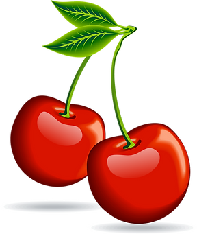 Cherry-Clipart-PNG-Image-02.png