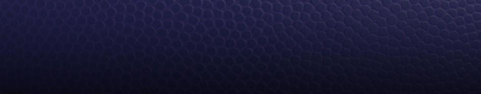 BG-Basketball-Texture.jpg
