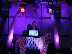 Themed corporate parties