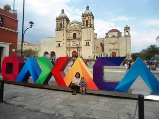 Oaxaca Update: Spring 2018