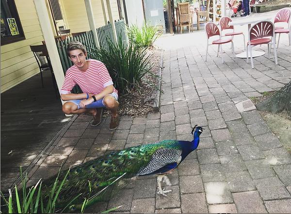 Michael Winn Peacock