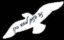 שחף-03-1.png