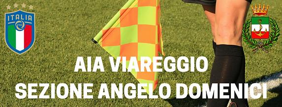 AIA VIAREGGIOSEZIONE ANGELO DOMENICI.png