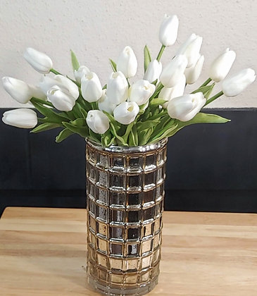 The BEST Lady Tulips