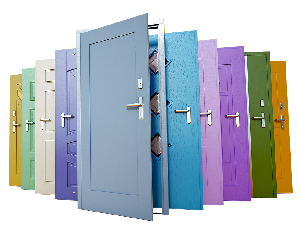 Selection of doors in multiple colours