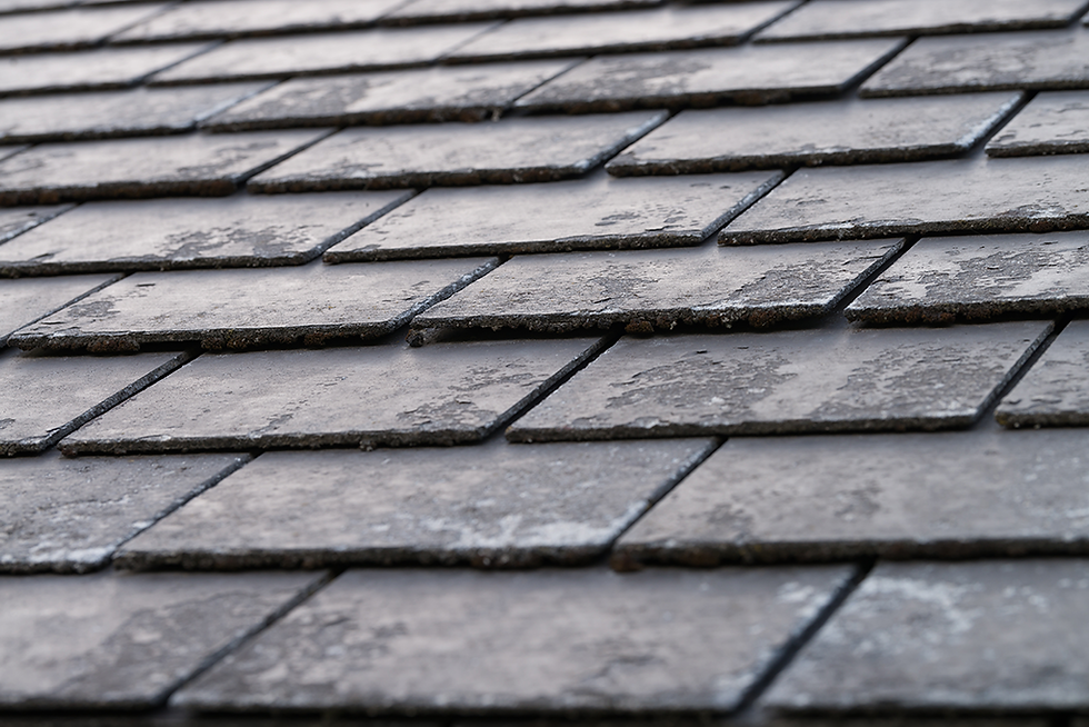 Tiled roofing example