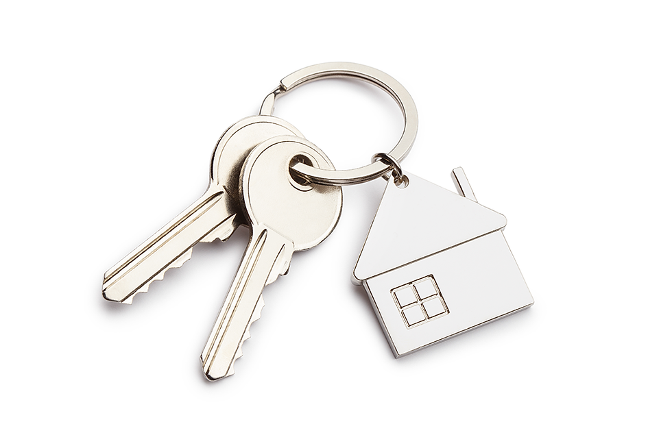 Keys with chrome house keyring