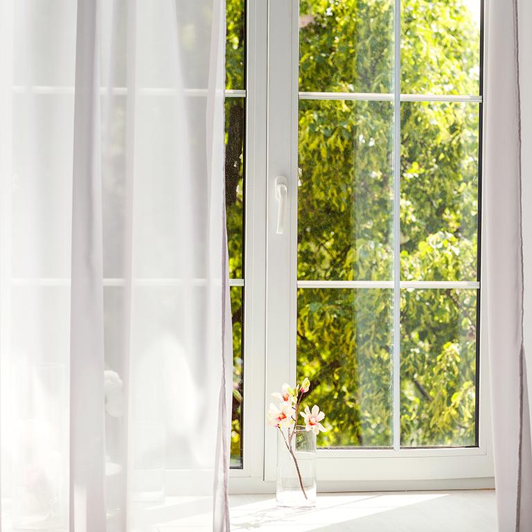 View on to trees through Sash double glazing windows