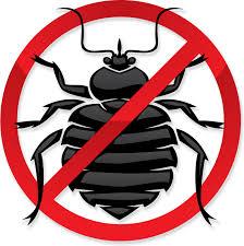 download bed bug