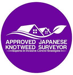 Logo Japanese Knotweed Surveyor.jpg