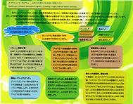 20201206 LAAprogram.jpg