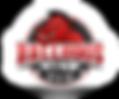 ballhogs-logo2.png