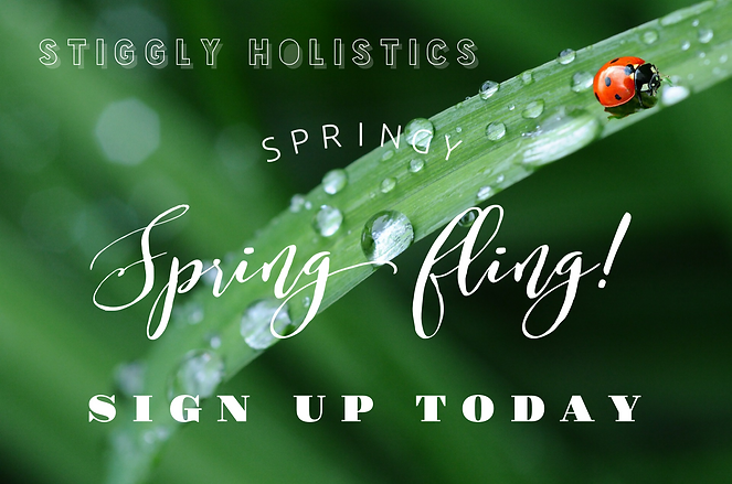 spring fling sign up today.PNG