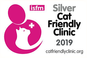 CFC Silver logo for clinics (1).jpg