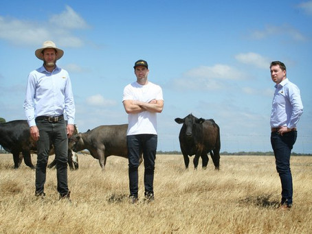 'Paddock to Plate' Not Just a Slogan, But a Proven Chain