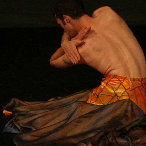 Fallen (2004) solo dance developed from morphology and migratory pathways of Monarch butterflies