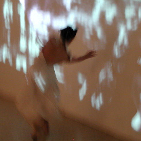 Any/Nano/Body (2004) intermedia performances